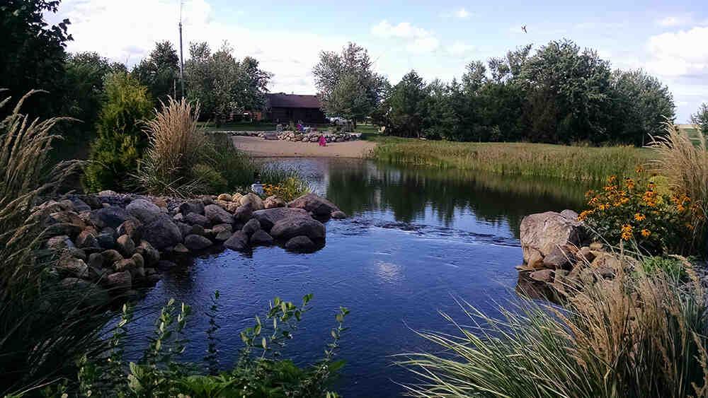 Comment nettoyer un étang naturellement ?