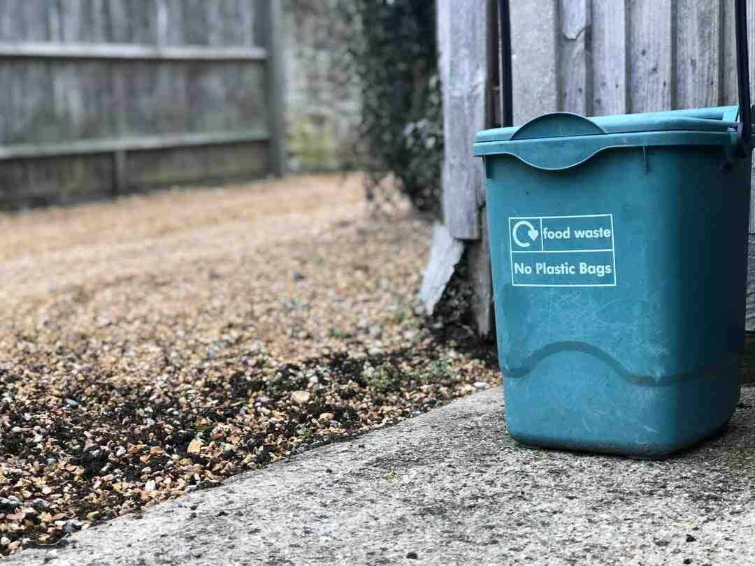 Quels sont les déchets que l'on peut mettre dans un composteur ?