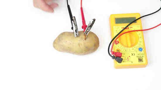 Comment allumer une ampoule avec une pomme de terre ?