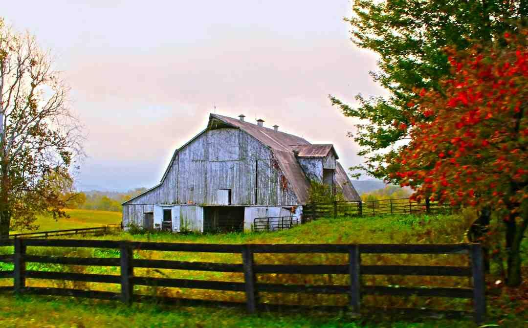 Comment réhabiliter une grange en habitation ?