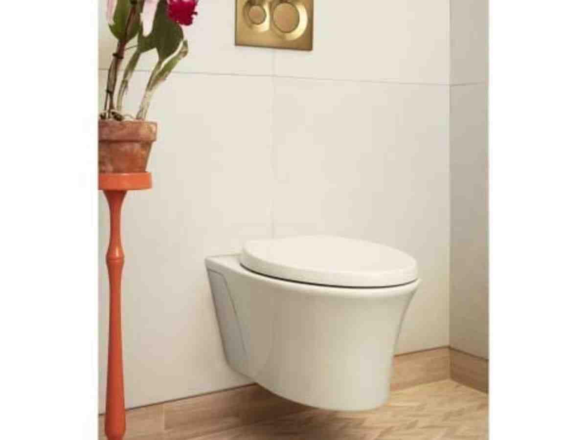 Pourquoi WC sortie verticale ?