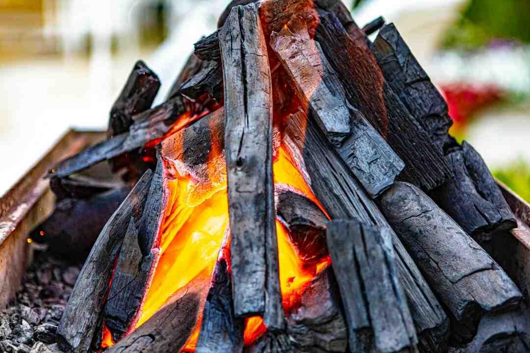 Pourquoi le charbon de bois purifie l'eau ?