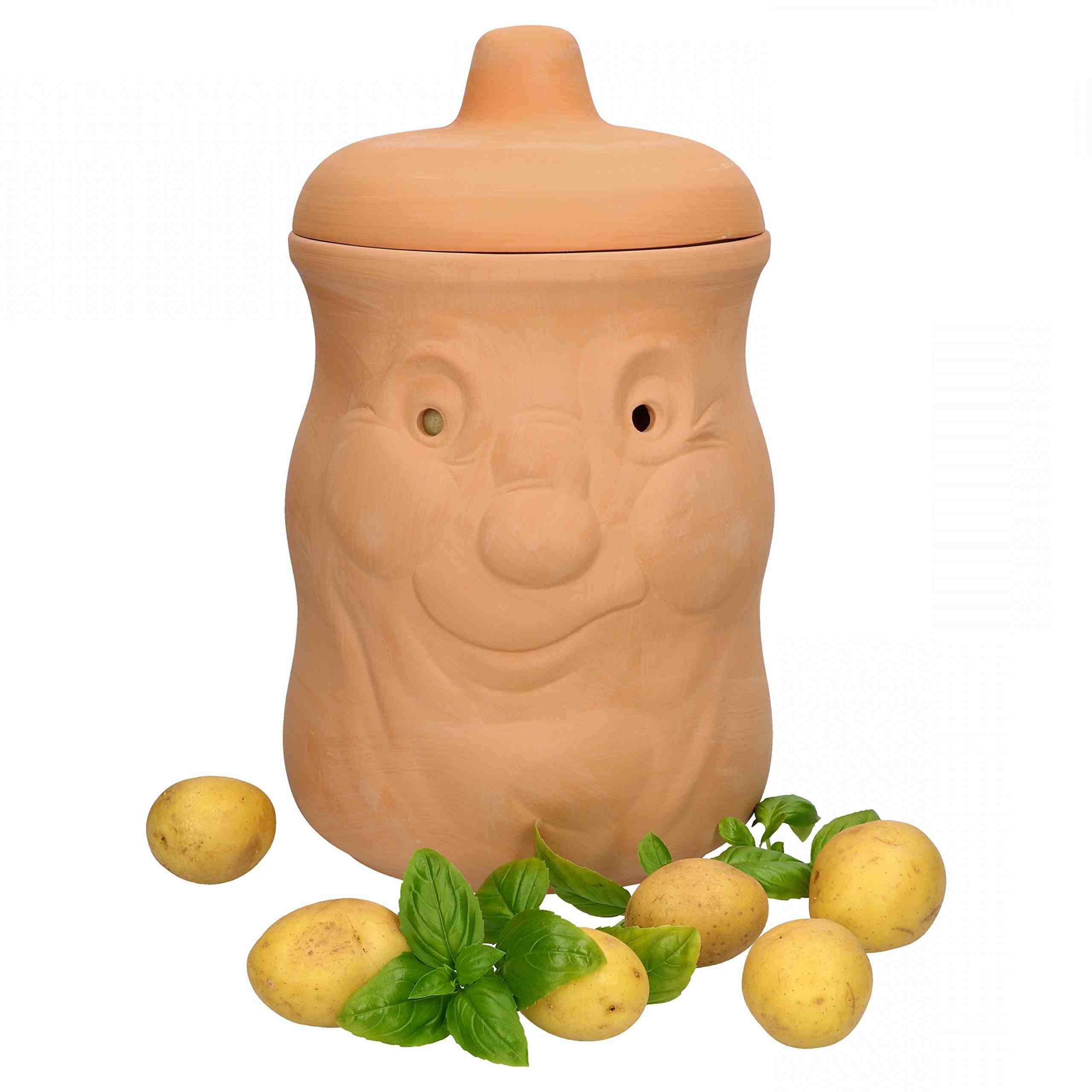 Pourquoi les pommes de terre s'oxydent ?