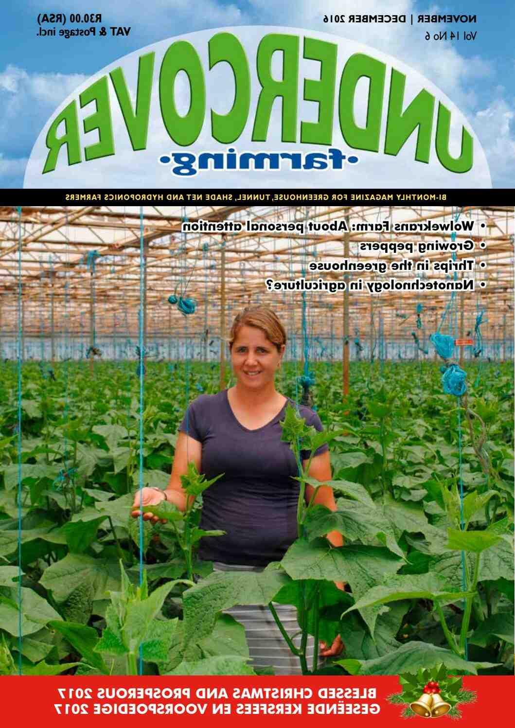 Quand planter des légumes d'hiver ?