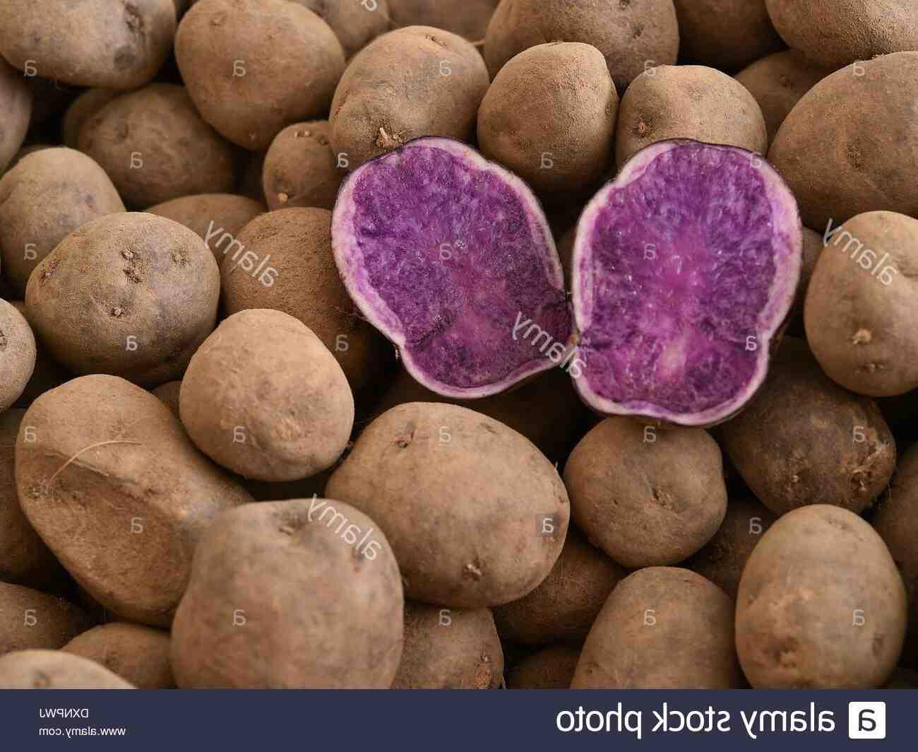 Quel légume associer avec les haricots ?