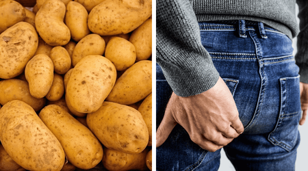 Quelle variété de pomme de terre polyvalente ?