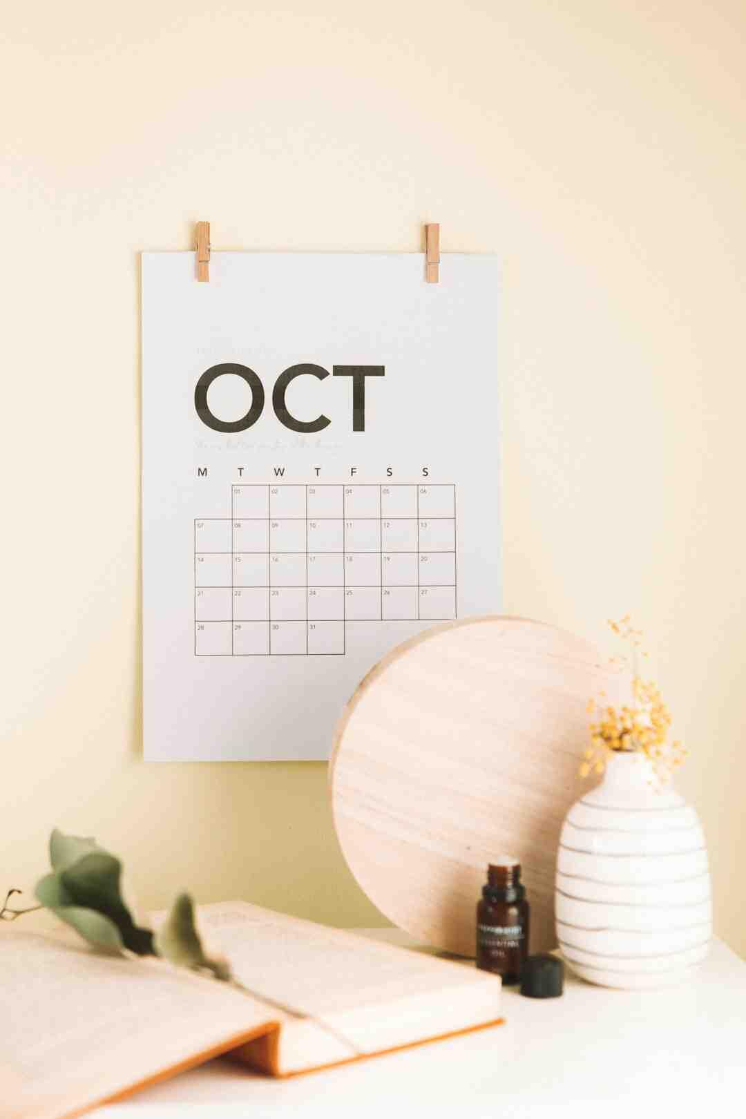 Quelles vivaces planter en novembre ?